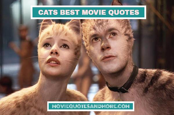 Cats Best Movie Quotes – 'Tonight is a magical night.'