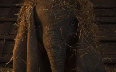 Dumbo New Movie Quotes – 'We're all family here.'