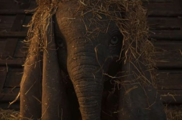 Dumbo Quotes | Dumbo New Movie Quotes We Re All Family Here