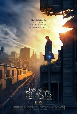 Fantastic Beasts and Where to Find Them Quotes  Quotes