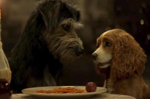 Lady And The Tramp 2019 Best Quotes With Me Every Day Could Be An Adventure