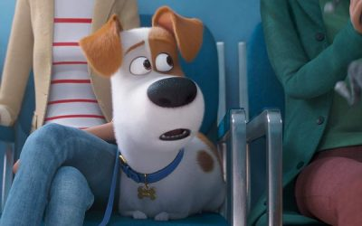 The Secret Life of Pets 2 New Quotes