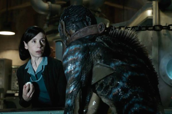 The Shape Of Water Best Quotes When He Looks At Me He Does Not